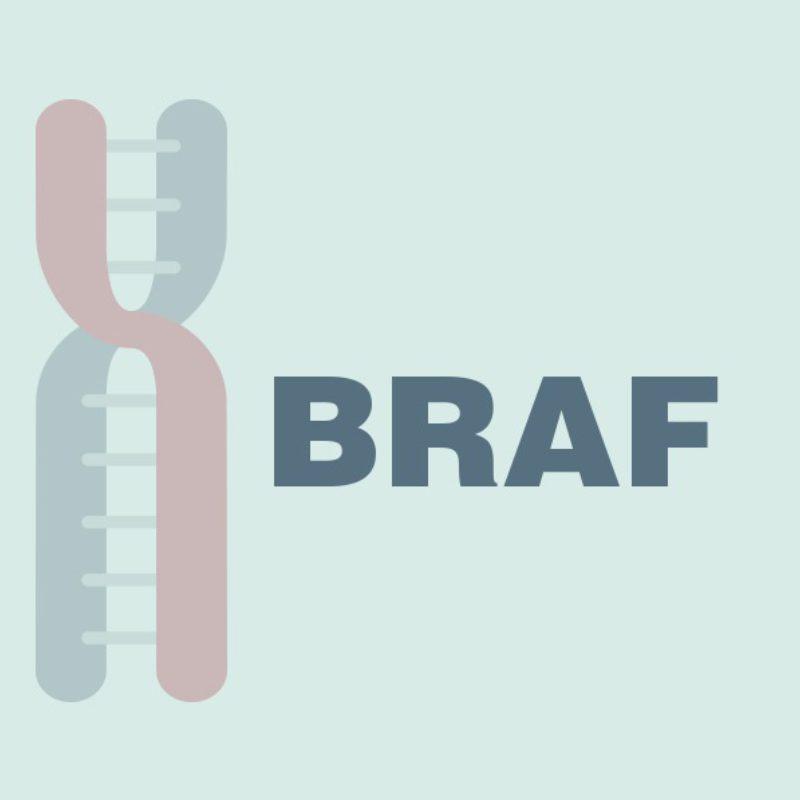 Крем на основе BRAF- ингибитора может помочь больным с кожной сыпью на фоне терапии ингибиторами EGFR